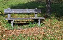 bench-wood-bank-seat-nature-out-484732.jpg
