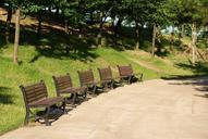 bench-chair-forest-wood-park-362512.jpg