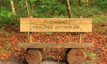 bench-bank-forest-nature-autumn-471789.jpg