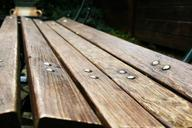 bench-wood-board-park-perspective-558071.jpg