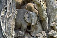 wood-carving-elephant-carving-677938.jpg