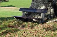 bench-bank-nature-out-seat-click-494375.jpg