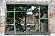 window-home-tree-abandoned-634089.jpg