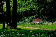 bench-nature-trees-leaves-forest-573633.jpg