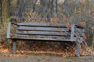 bench-rustic-weathered-nature-park-1017326.jpg