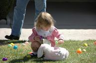 easter-eggs-search-child-girl-find-388363.jpg